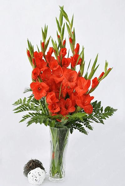 Cách cắm hoa lay ơn để bàn thờ vào ngày Tết và các ngày lễ 2