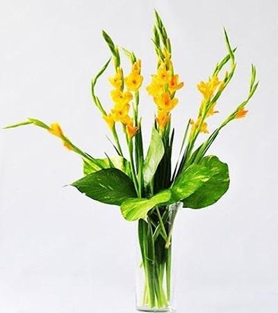 Cắm hoa lay ơn để bàn thờ