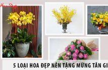 5 loại hoa đẹp nên tặng mừng tân gia