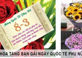 4 loài hoa tặng bạn gái ngày 8/3 lãng mạn nhất