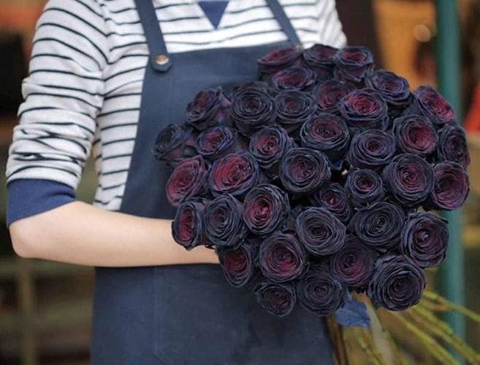 Ngày nay, bạn có thể tặng hoa hồng đen cho người mình yêu thể hiện tình yêu bất diệt