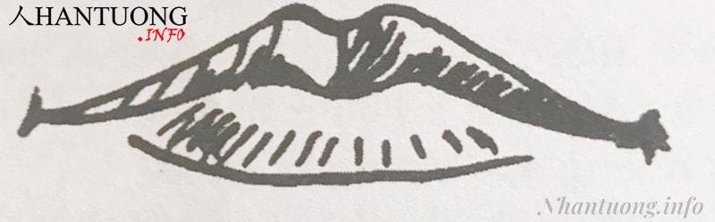 Hình dáng tướng miệng rồng