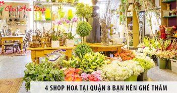 4 shop hoa tại quận 8 bạn nên ghé thăm